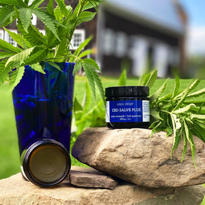 CBD Salve Plus
