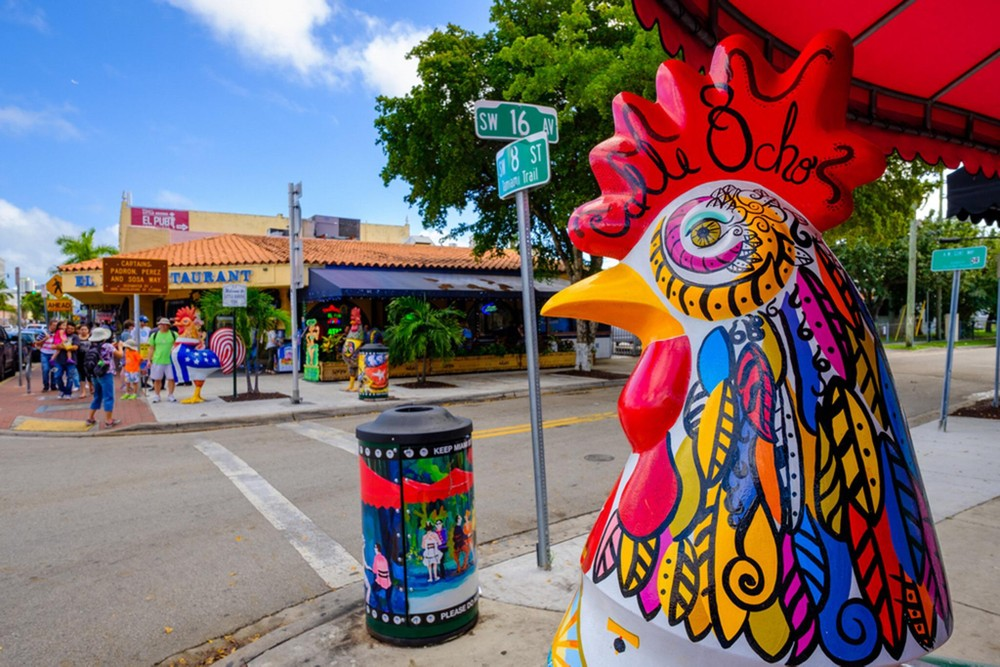 Miami City, Little Havana Tour plus a FREE Bicycle Rental in South Beach