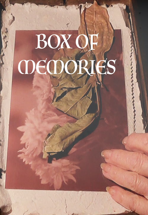 The Box of Memories