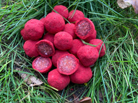 Robin Red Garlic Hookbaits