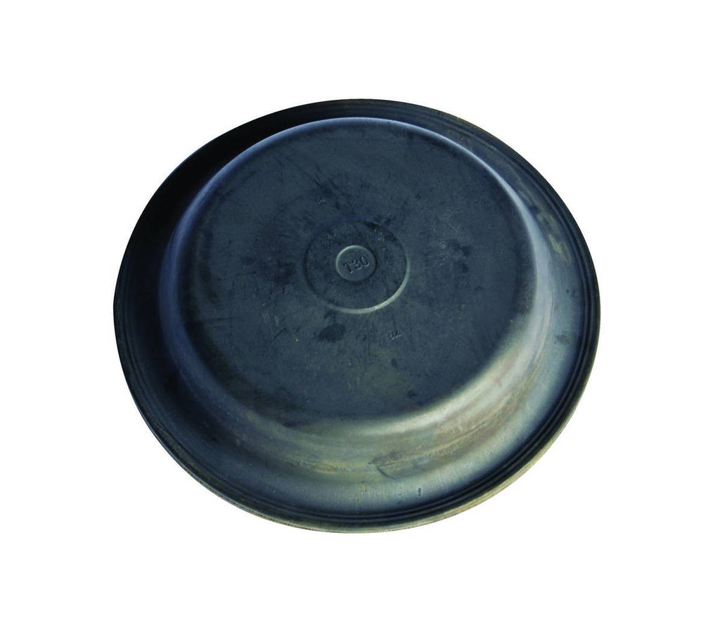 DIAPHRAGM TYPE 36 F236669