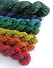 Load image into Gallery viewer, Hand dyed mini skeins. 6 x 20g and 100g - Dark Winter Rainbow deconstructed.