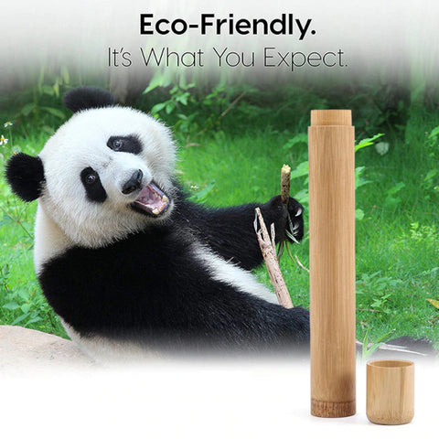 Eco-friendly bamboo tooth travel case.