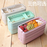 Japanese style multi-tiered lunch box with compartments and food separators for fruit salad and meat microwave safe