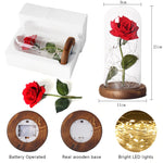 Red rose flower LED in glass dome mystic night light