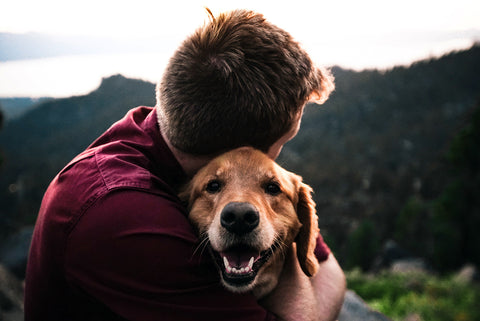 20 of the Best Gifts for Dog Dads