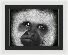 Load image into Gallery viewer, Captivity - Framed Print