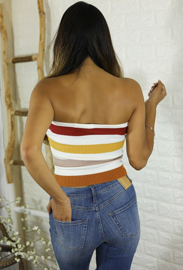Bria Multi Ribbed knit Stripe Tube Strapless  Bright Tones Top - SURELYMINE
