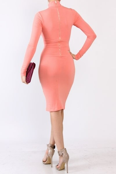 Turtleneck Fitted Long Sleeves bodycon Dress with Back Zipper - SURELYMINE