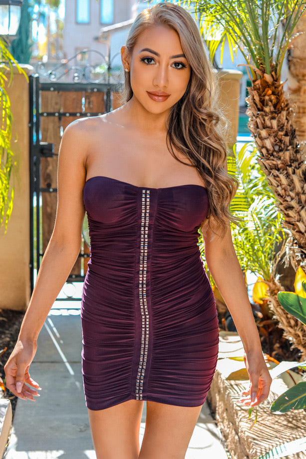 Cecile Tube Dress with Ruched Center and Rhinestones Purple - SURELYMINE