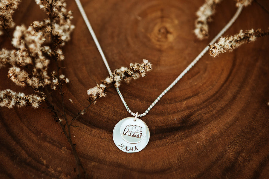 Silver 2 Disc Layer Necklace