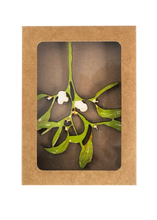 Load image into Gallery viewer, Mistletoe Decoration - East End Press