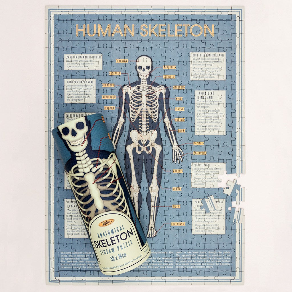 Anatomical Skeleton 300 Piece Puzzle In A Tube