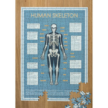 Load image into Gallery viewer, Anatomical Skeleton 300 Piece Puzzle In A Tube