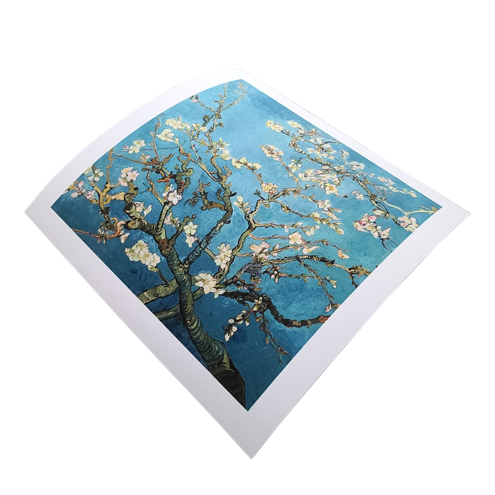 Enhanced Matte Photo Paper EMPP Prints - Germotte