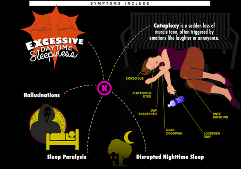 A Deeper Look at Narcolepsy Through the Eyes of the Afflicted