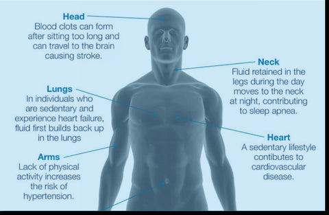 Sitting Too Long Can Affect Your Health