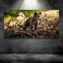 Load image into Gallery viewer, Bear Cub Standing on Tree