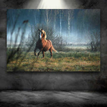 Load image into Gallery viewer, Horse Dream