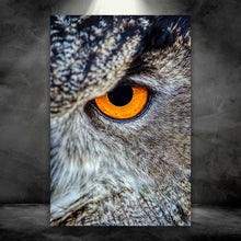 Load image into Gallery viewer, Owl Eye