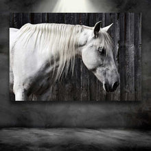 Load image into Gallery viewer, White Horse