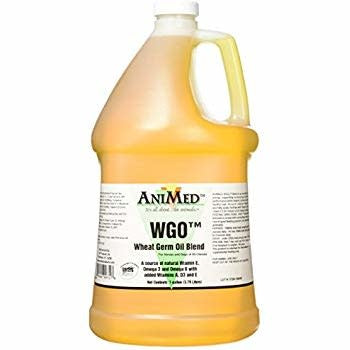 WHEAT GERM OIL BLEND GAL