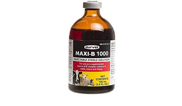 MAXI B-12 INJECTIBLE