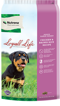 Nutrena Loyall Life Large Breed Puppy Chicken & Rice 40LB