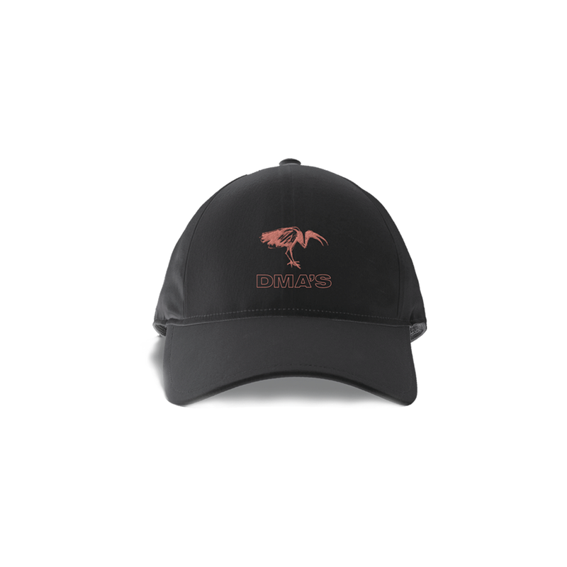 Ibis Black Dad Hat