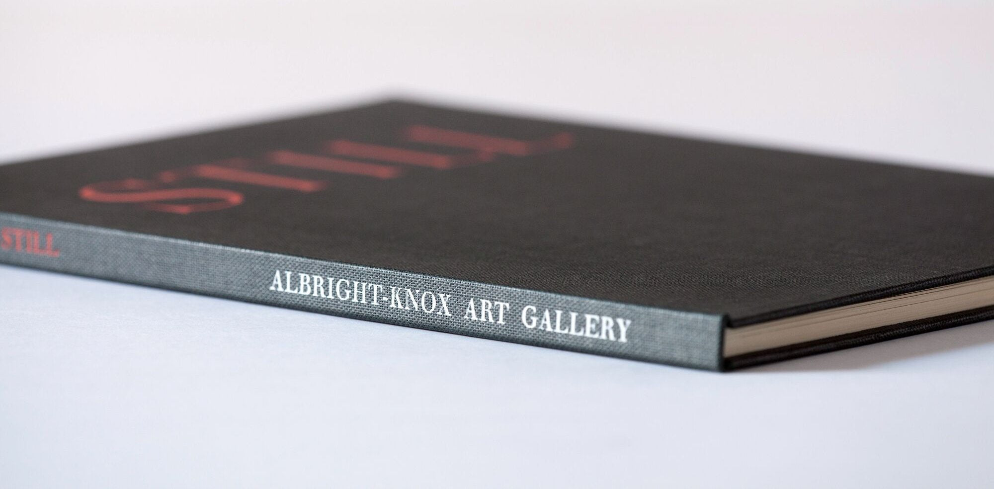 Albright-Knox Art Gallery Still Catalog