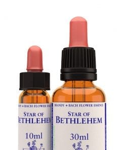 Star of Bethlehem 10 ml.