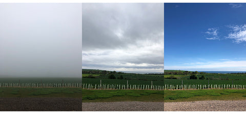 A range of weather