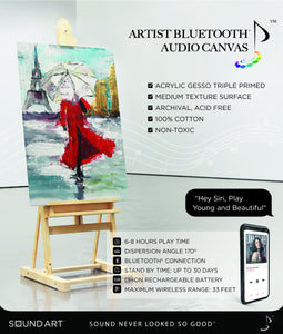 Artist Bluetooth Audio Canvas
