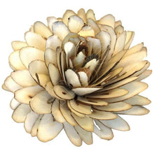 Load image into Gallery viewer, *Protea click for more colours (wholesale)-Wholesale Flowers-Angel Aromatics