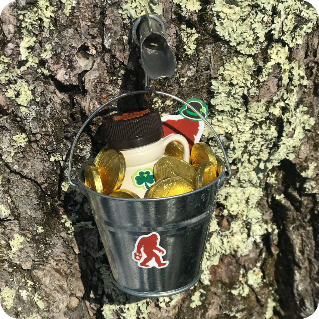Pot O' Gold 1/2 Pint of Maple Syrup w/ Pail, Shuüg Sticker and Chocolate Coins
