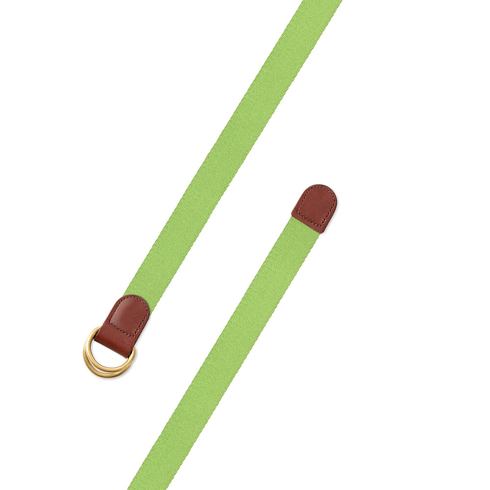 Spring Green Surcingle D-Ring Belt