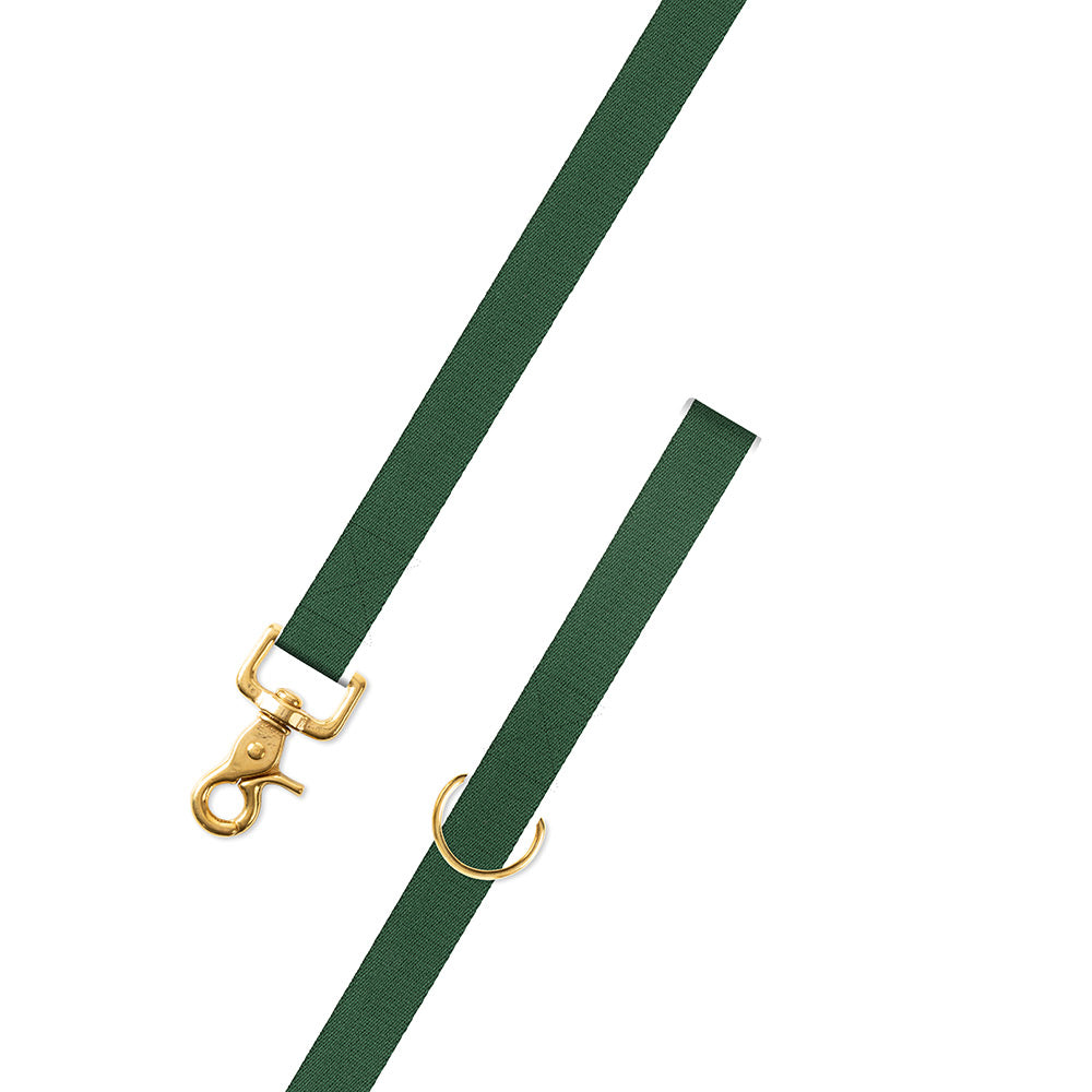 Hunter Green Surcingle Dog Leash
