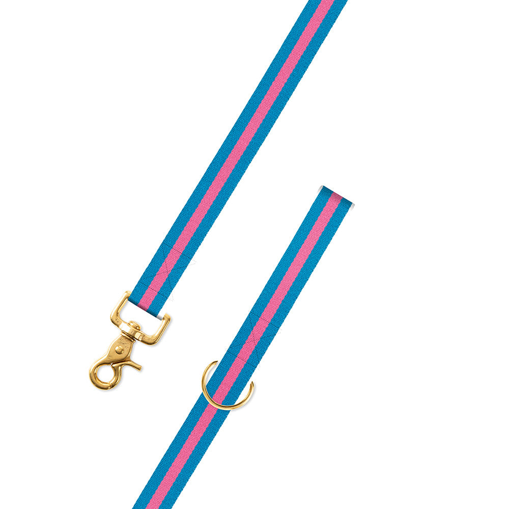 Light Blue & Pink Surcingle Dog Leash
