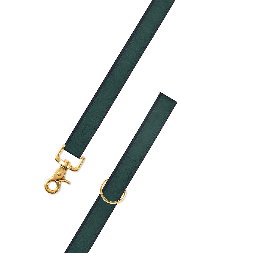 Green on Navy Suede Dog Leash