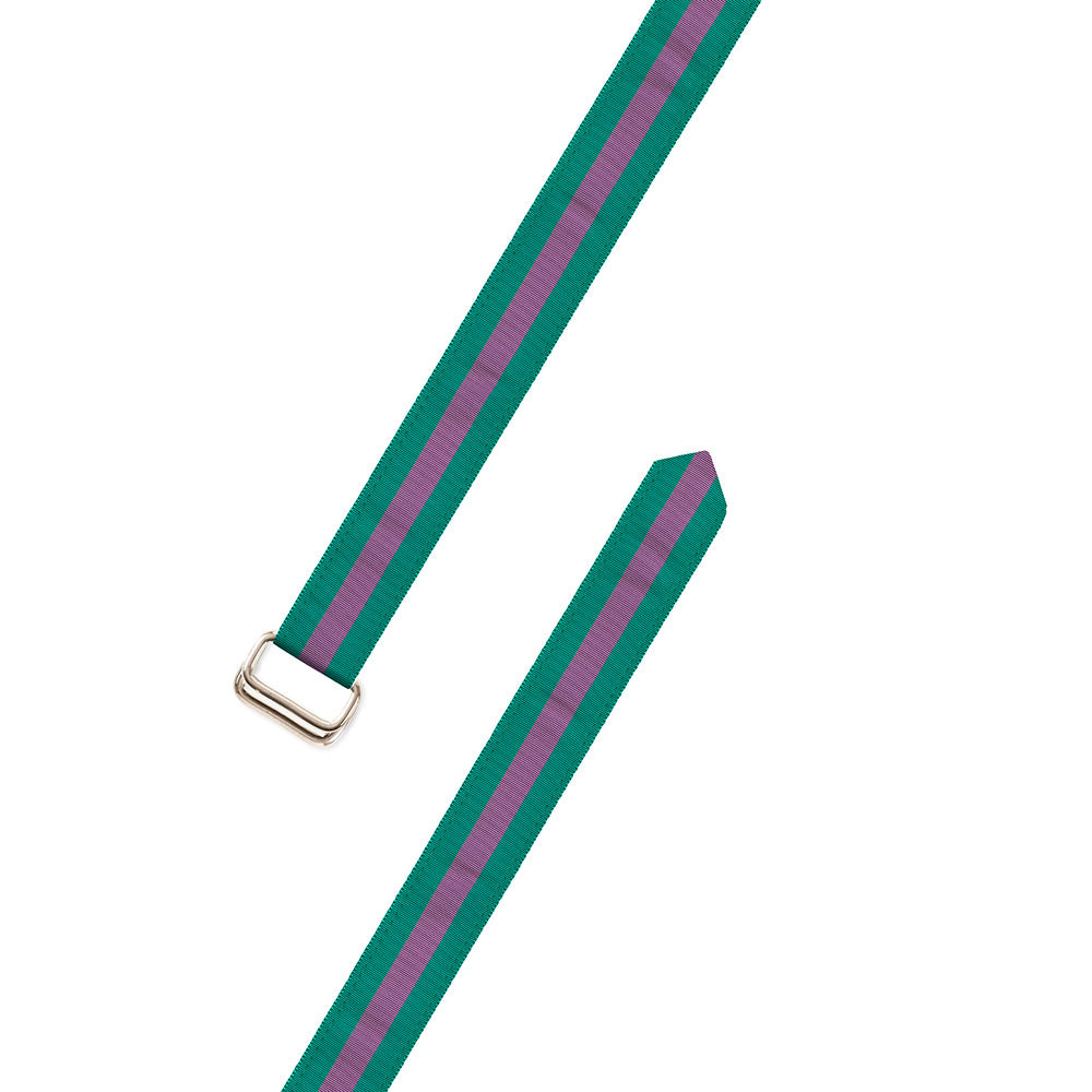Green & Purple Grosgrain Ribbon D-Ring Belt