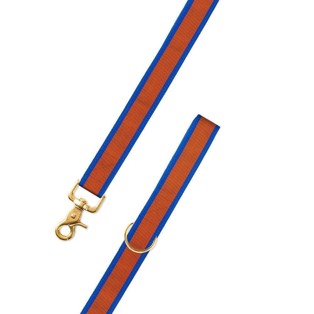 Orange on Blue Grosgrain Ribbon Dog Leash