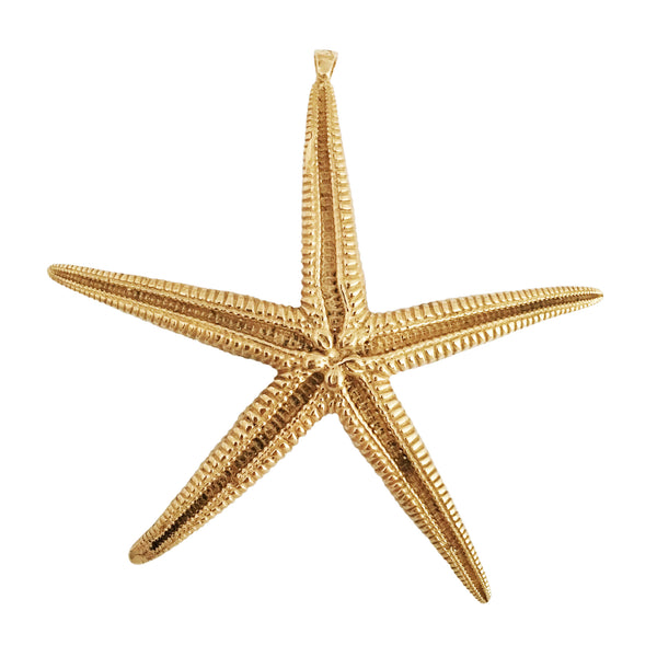 Apis ancient bronze cast Asteroidea Starfish