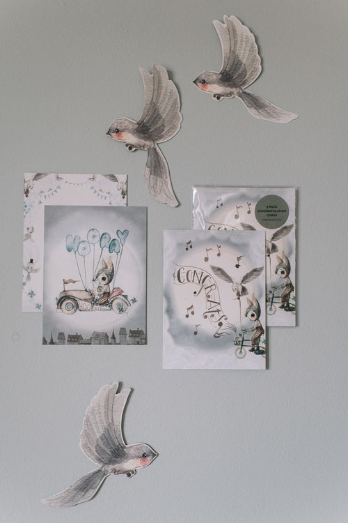 Mrs Mighetto | Land of Birds 2-Pack Birthday Cards Flying Car-Scandikid