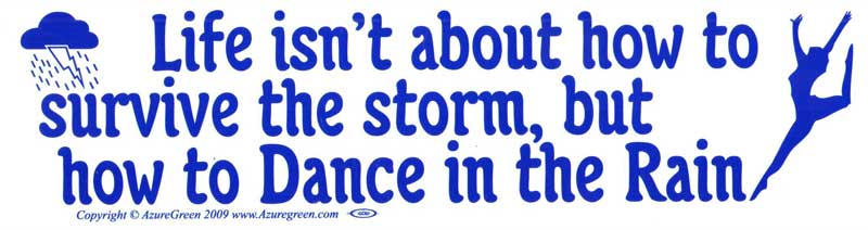 bumper sticker - life isn't about how to survive the storm