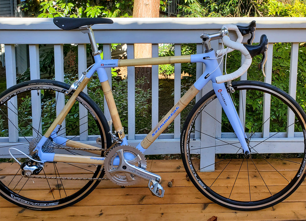 Finished Road Easy Build Bamboo Bike
