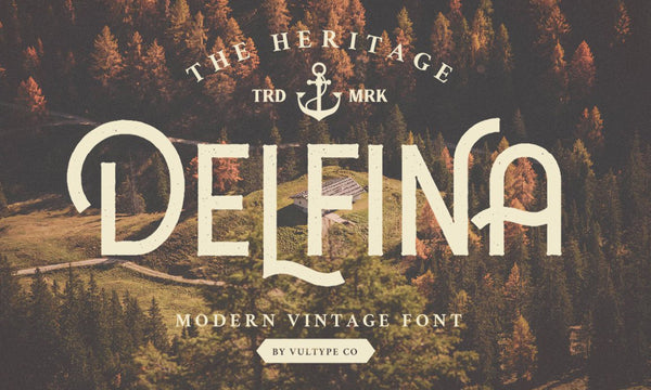 Delfina Typeface (Free Version)