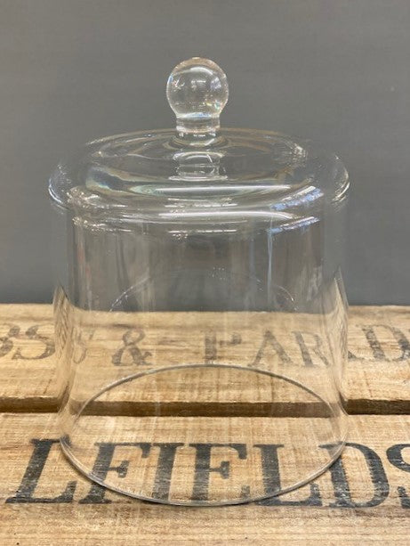 Clear Glass Bell Dome