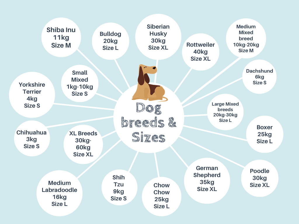 Pet bed size guide