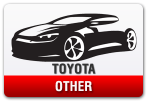 . Toyota No-Drill Front License Plate Mount for Other Models