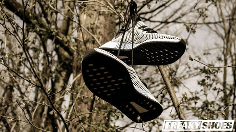 COMPETITIVE SHOE TOSSING WHAT IS IT